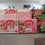 Llegada a Tokyo – Aeropuerto de Narita