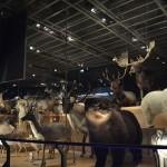 Museo de La Ciencia y La Naturaleza de Tokyo