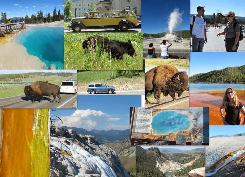 Yellowstone (95)