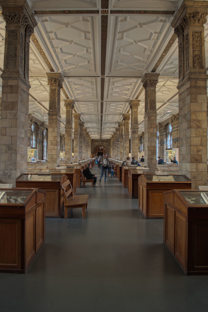 Mineral Room Natural History Museum London