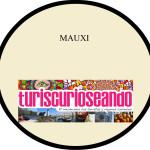 logo-MAUXI